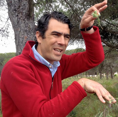 Ricardo Canas